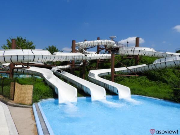 この夏絶対に行きたい東武スーパープール!ホワイトタイガー柄のスライダーにも注目!