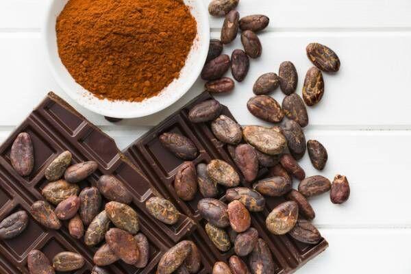 間食にチョイス!高カカオチョコレートが注目されている理由