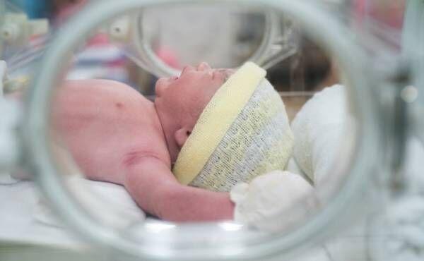 保育器に入っている赤ちゃん