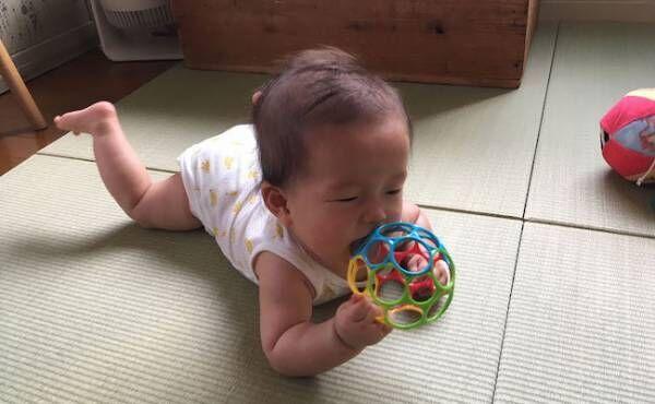 生後6カ月になったこっちゃんの1日の様子や成長