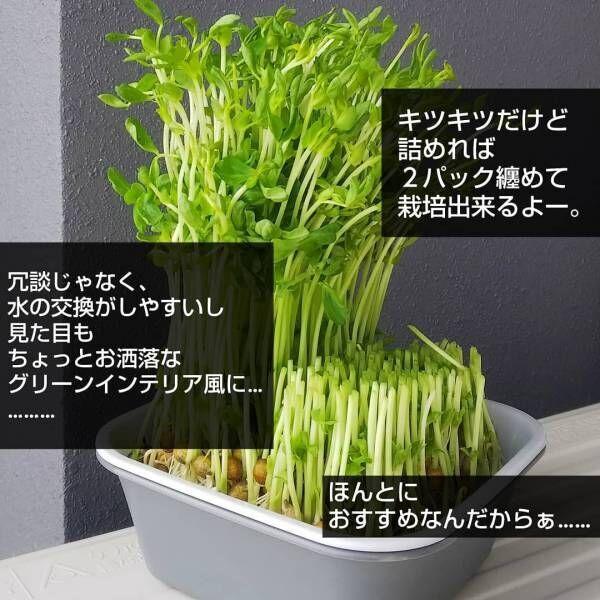 神本スクエアバット1-8
