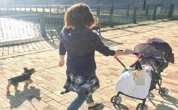 エマちゃん犬のお散歩
