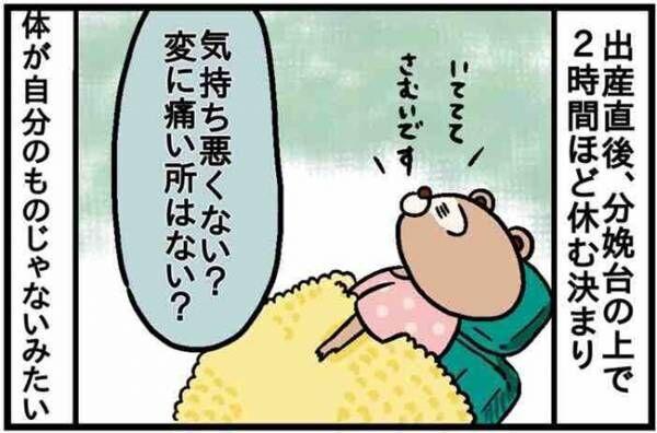 【ねこたぬのはじめて育児15】