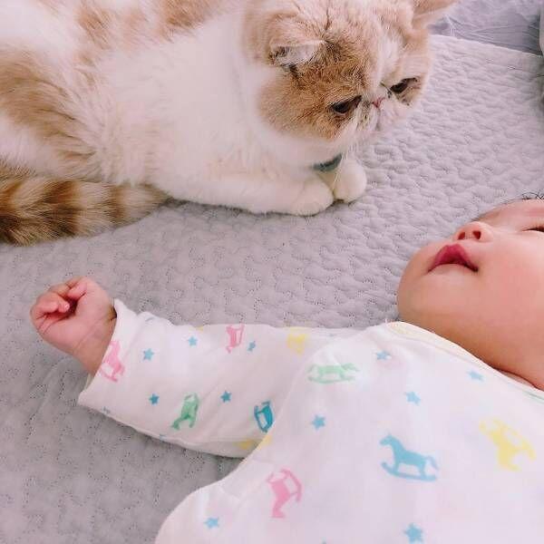 令和生まれの赤ちゃんと猫のぽこじ(♂)