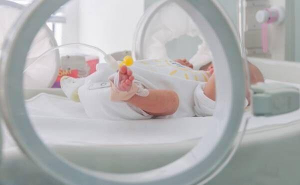 保育器越しの赤ちゃん