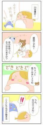ドキドキ…!赤ちゃんの性別、どっち?!【赤ちゃんがやってくる!26】