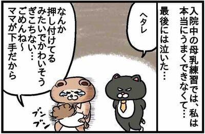ねこたぬ80_1