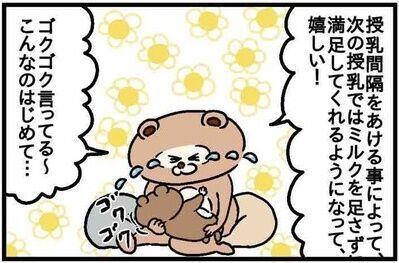 ねこたぬ80_10