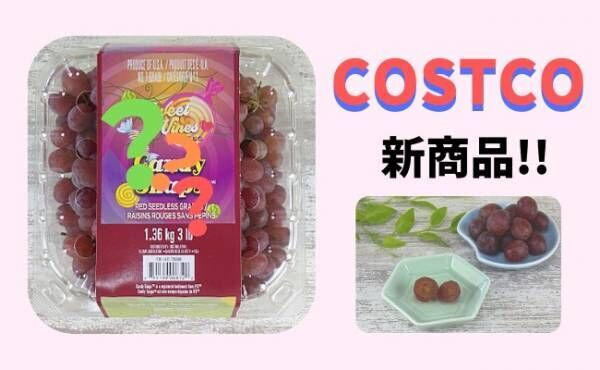 costco/2020年秋新作キャンディスナップグレープ