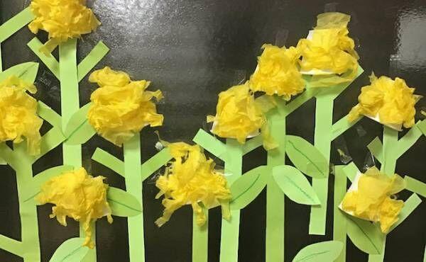 菜の花作りの画像