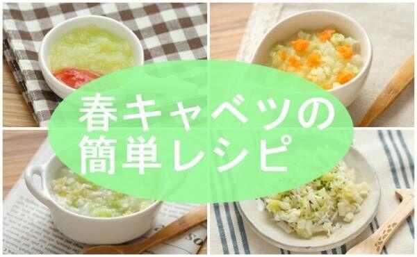 旬野菜、春キャベツの離乳食レシピ