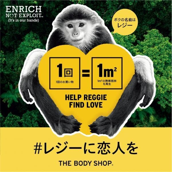 (Photo by THE BODY SHOP)