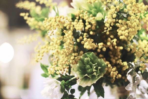 花粉で頭がかゆい!辛いこの時期も可愛く髪や頭皮を花粉から守ろう!