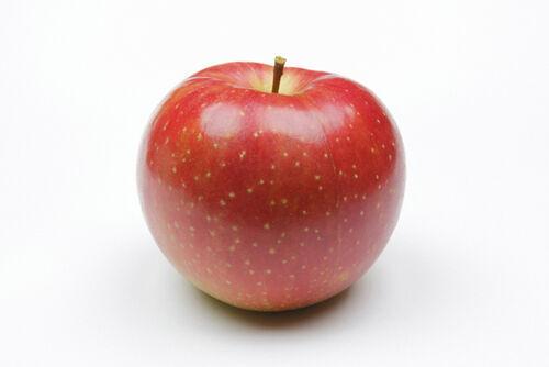 フルーツの力できれいになる?フェイシャルマスクの材料に適した果物たち