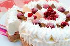 クリスマス、ホームパーティーに!ひんやり美味しいクリスマス限定・アイスクリームケーキをチェック