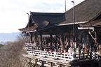 京都オタクがお勧め!ベビーカーでも行ける京都の神社仏閣3つ