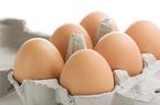 卵を使ったお弁当作りが超スピーディーに!レンジでチンッな卵クッキング4アイテムをご紹介!
