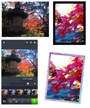 紅葉をLINEカメラでより鮮やかに加工!見比べてみよう:後編
