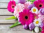 花を贈るときには嬉しい花言葉をそえてみよう