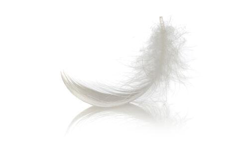 羽毛ぶとんの温もりを効率よく実感するためには!?