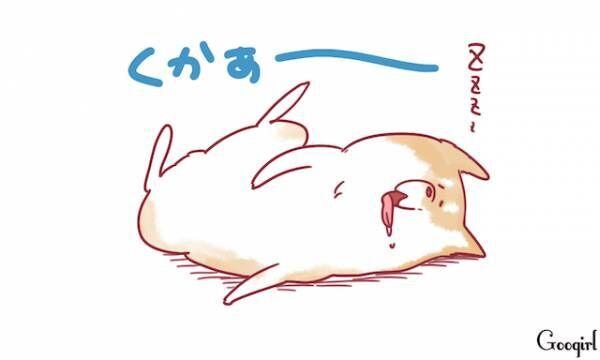 ペットあるある? 人っぽくてかわいい仕草4選~犬編~