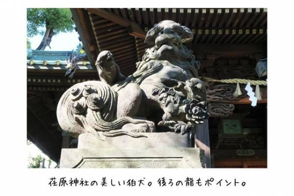 【趣味と私と人生と】vol.12 狛犬は可愛くて個性があるから、愛でる喜びがあります(ミノシマタカコ)