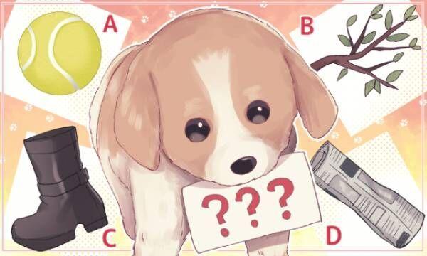【心理テスト】犬がくわえるもので診断! あなたが驚く恋の運気は?