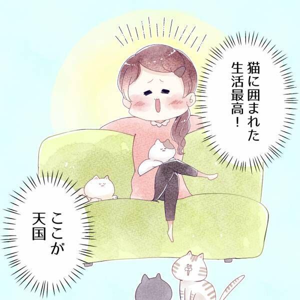 猫好きあるある! 恋人よりも猫と暮らしている方が良い理由 Vol.7
