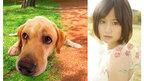 大の犬好き、前田敦子が『LOVE まさお君が行く!』主題歌を担当!
