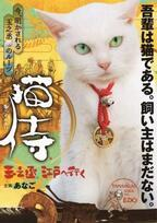 """【特報映像】白猫と""""萌えるサムライ""""が出会うまで!「猫侍 玉之丞、江戸へ行く」2月放送へ"""