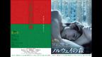 『ノルウェイの森』ポスターに松山ケンイチのラブシーン! 愛と涙の公募コピーも発表