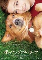 """""""3度も生まれ変わった""""犬と少年のラブストーリー『僕のワンダフル・ライフ』公開へ"""