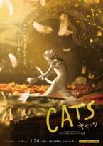 『キャッツ』ヴィクトリア目線の日本限定予告&キャラポスターも