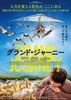 絶滅寸前の渡り鳥を救う…ニコラ・ヴァニエ監督最新作『グランド・ジャーニー』公開