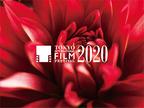 2020年の東京国際映画祭、コンペ&日本映画スプラッシュなど部門統合で開催