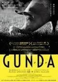 動物たちの暮らし覗く…全編音楽・ナレーション無しのモノクローム映像で構成された映画『GUNDA』予告編公開