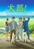 林遣都×中川大志『犬部!』Blu-rayリリース、約120分の豪華特典映像収録