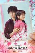桜の木の下で恋が始まる…中島健人×松本穂香『桜のような僕の恋人』ティザー予告
