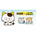 秋田県の「ミール君」や秋田犬「ゆめちゃん」とリアルタマさがしゲーム開催