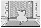 なぜ猫は飼い主が帰ってくると出迎えてくれるのか