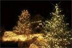 兵庫県神戸市・六甲山で、1000万ドルの夜景とともに楽しむイルミネーション