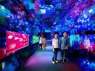 東京都墨田区のすみだ水族館、「クラゲ万華鏡トンネル」など新展示