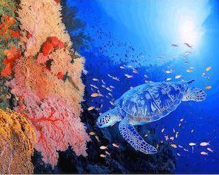 東京都目黒区・伊東昭義美術館で、開館一周年記念展「龍宮の海」展を開始