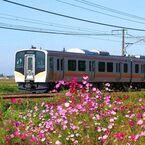 JR東日本E129系、新型車両の展示会を新津駅・長岡駅・新潟駅にて11/30開催