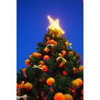 新宿にミカン約500個で飾ったクリスマスツリー! ミカンジュースの蛇口も
