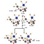 人工光合成の実現に前進 - 岡山大など、酸素発生反応物質の原子構造を解明