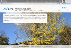 Office 365サイト活用入門 (22) パブリックサイトのデザインの変更