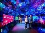 東京都・すみだ水族館で、幻想的な