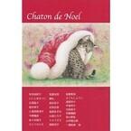 東京都・銀座で「子猫のクリスマス展」開催