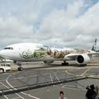 映画『ホビット』の特別ラッピング機が、成田空港で日本初披露!